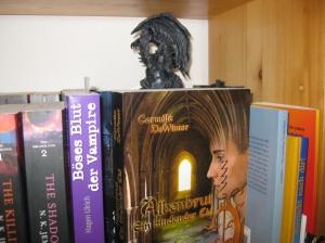 Ein Europäischer Kleindrache inspiziert ein Bücherregal auf Nesttauglichkeit